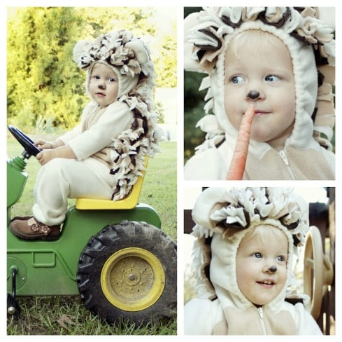 DIY Baby Hedgehog Costume - Top 28 Most Adorable DIY Baby Projects Of All Time