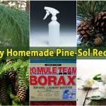 Easy Homemade Pine-Sol { Recipe }