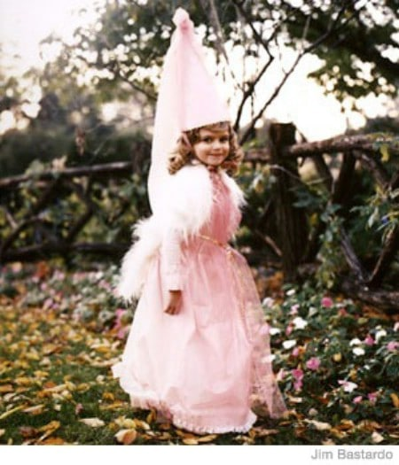 Enchanted Princess - 60 Fun and Easy DIY Halloween Costumes Your Kids Will Love