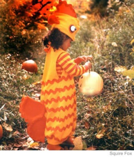 Gold Fish - 60 Fun and Easy DIY Halloween Costumes Your Kids Will Love
