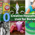 Top 10 Most Creative Household Uses for Borax
