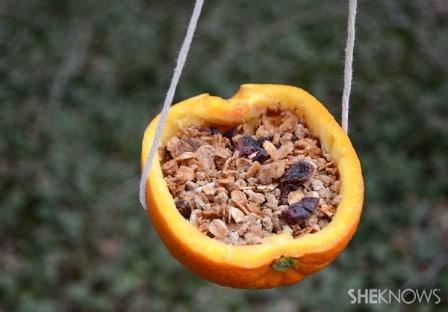 Orange Cup Birdfeeders - 23 DIY Birdfeeders That Will Fill Your Garden With Birds