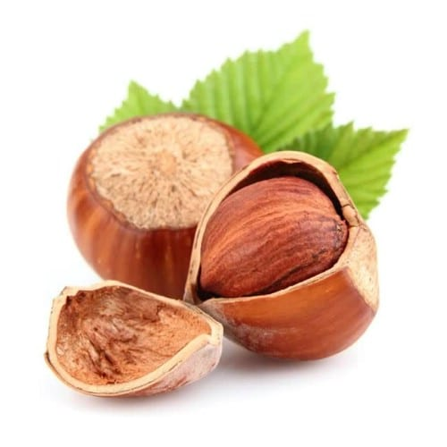 24. Hazelnuts - 25 Foods You Can Re-Grow Yourself from Kitchen Scraps