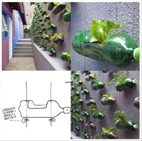 Wall Garden - 20 Fun and Creative Crafts with Plastic Soda Bottles