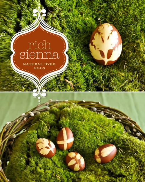Natural Sienna Easter Eggs - 80 Creative and Fun Easter Egg Decorating and Craft Ideas