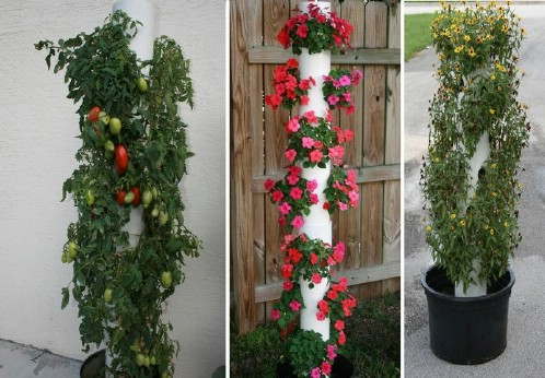 Vertical Planter Garden - 40 Genius Space-Savvy Small Garden Ideas and Solutions