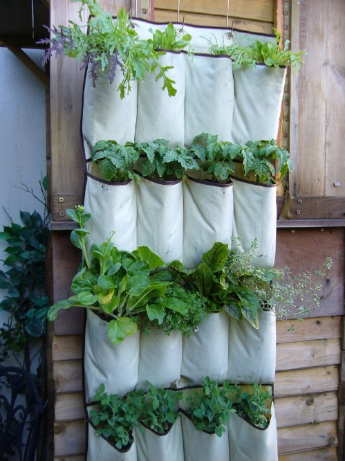 vertical garden 40 genius space savvy small garden ideas and solutions - Vegetable Garden Ideas Small Spaces