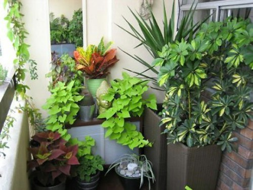 Balcony Gardens - 40 Genius Space-Savvy Small Garden Ideas and Solutions