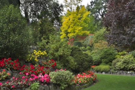 Plant Trees - 150 Remarkable Projects and Ideas to Improve Your Home's Curb Appeal