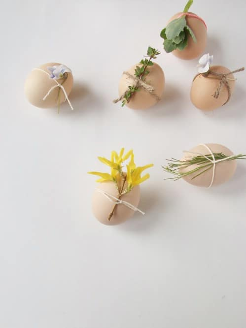 Natural Easter Eggs - 80 Creative and Fun Easter Egg Decorating and Craft Ideas