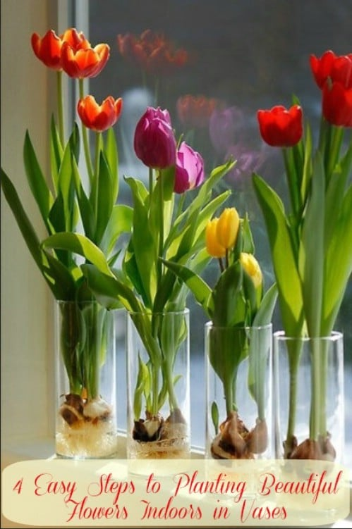 Indoor Planted Flowers - 80 Fabulous Easter Decorations You Can Make Yourself