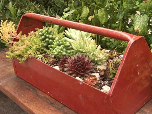 Tool Box Flower Gardens
