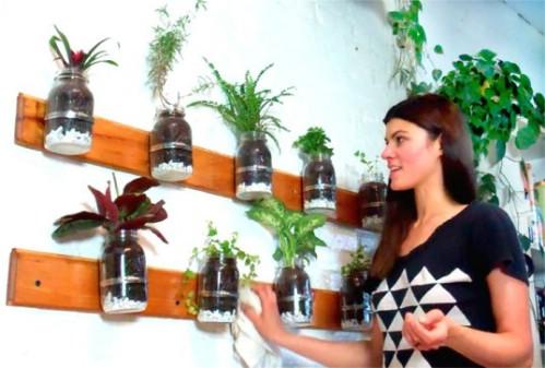 Mason Jar Gardening