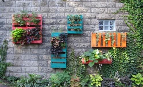 Wall Flower Garden