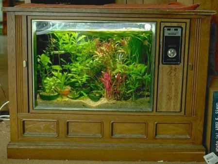 Make A New Aquarium From That Broken Old TV
