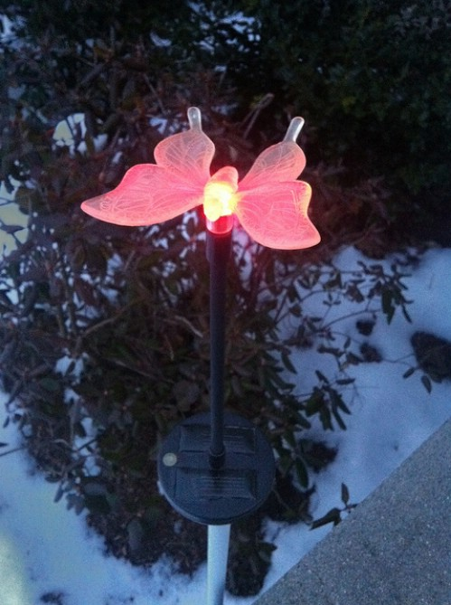 Rejuvenate Solar Lights