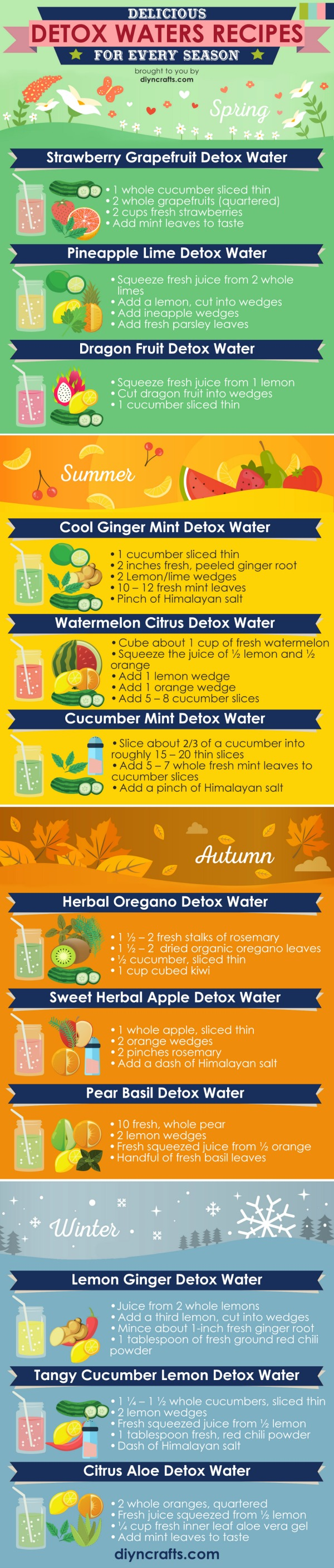 12 Seasonal Detox Water Recipes by DIYnCrafts