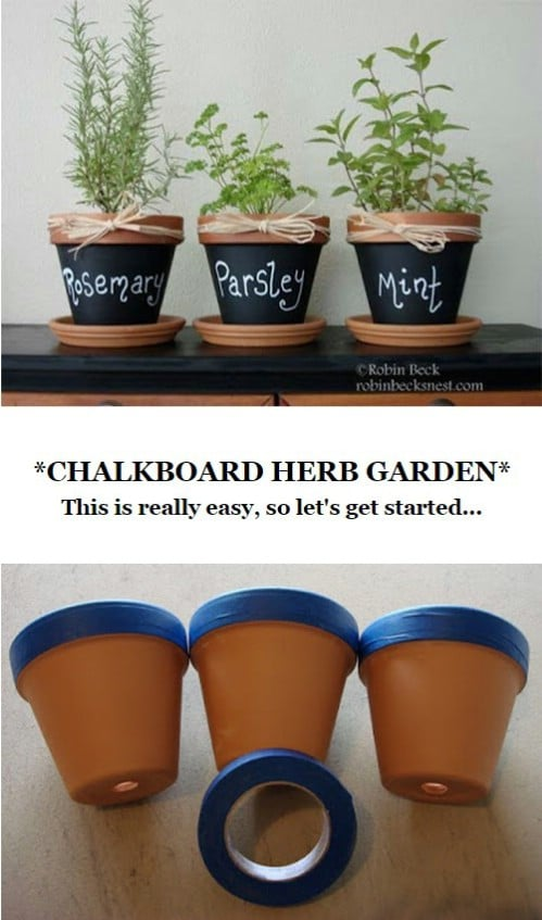 Label your herbs (or other plants).