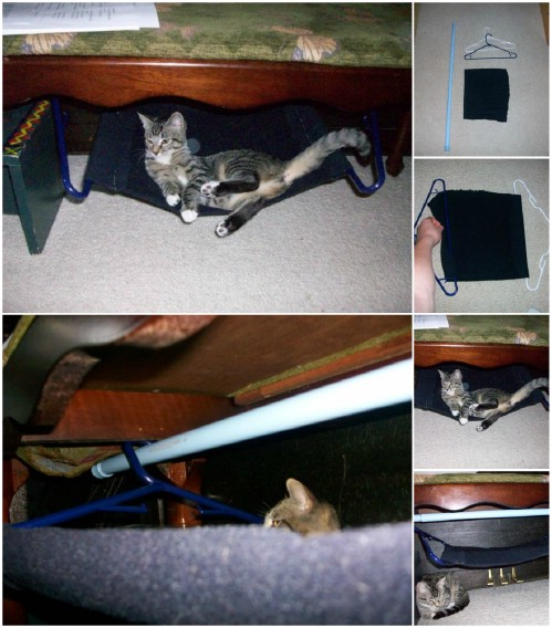 Diy Cat Bed How To Make