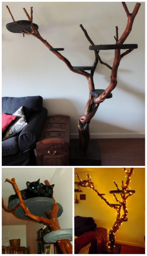 20 purrfect diy projects for cat owners diy crafts - Sofas para gatos ...