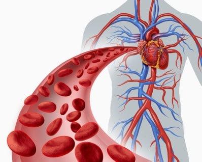 Boost blood circulation.