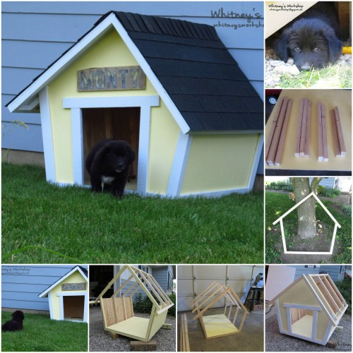 15 brilliant diy dog houses with free plans for your furry for 2 dog dog houses