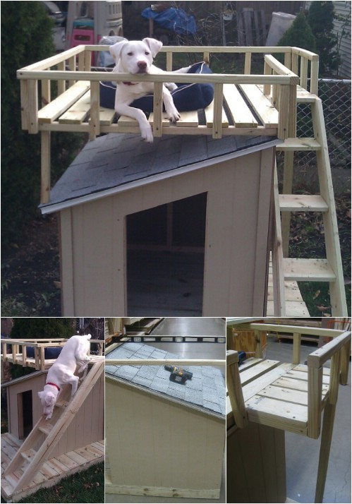 fit for a king 15 brilliant diy dog houses with free plans for your furry