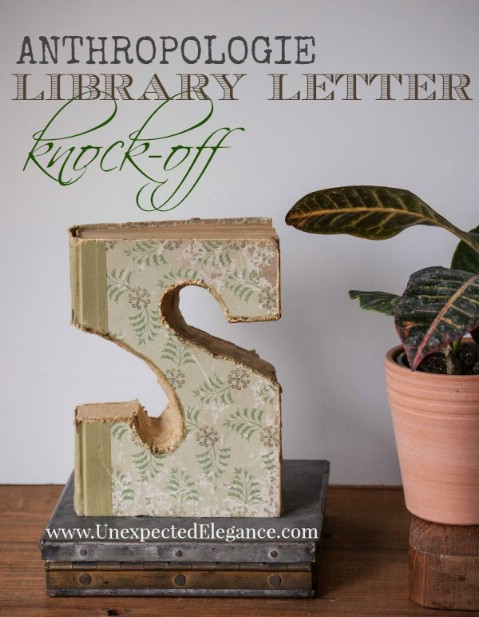 Bookworm Letters
