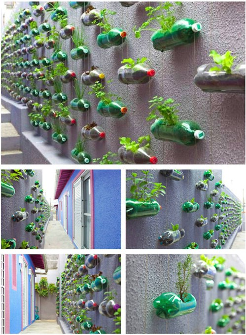 Amazing Creative Indoor Herb Garden Ideas Part - 7: Platic Bottle Vertical Herb Garden