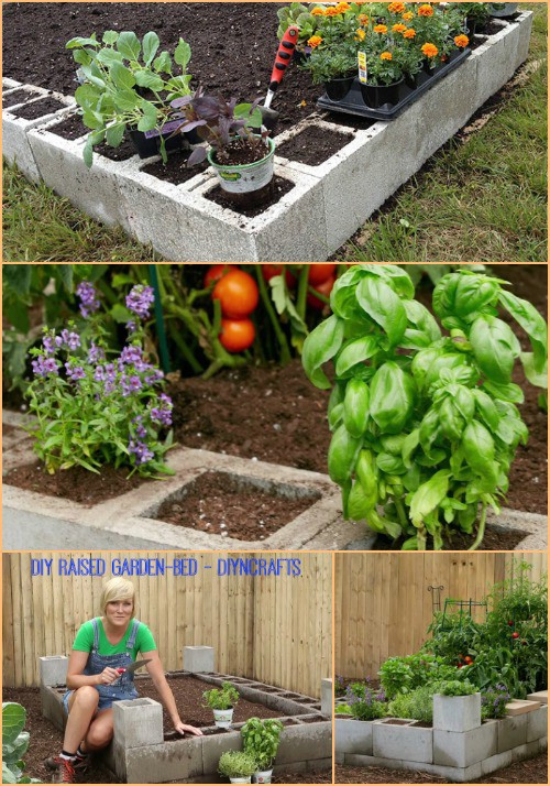 Turn a bunch of cement blocks into a raised garden bed.
