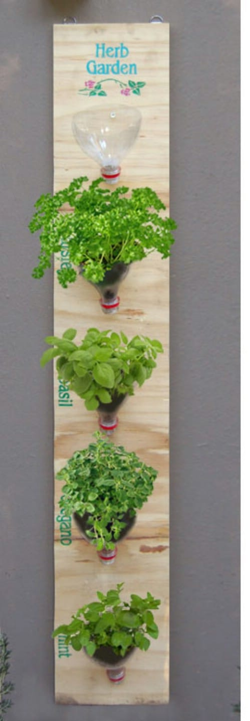bottle top vertical garden - Hanging Herb Garden