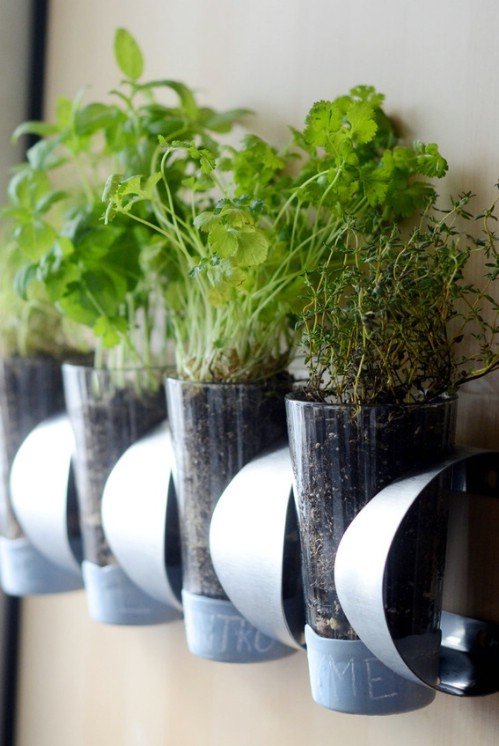 Turn a wine bottle holder into a wall planter.