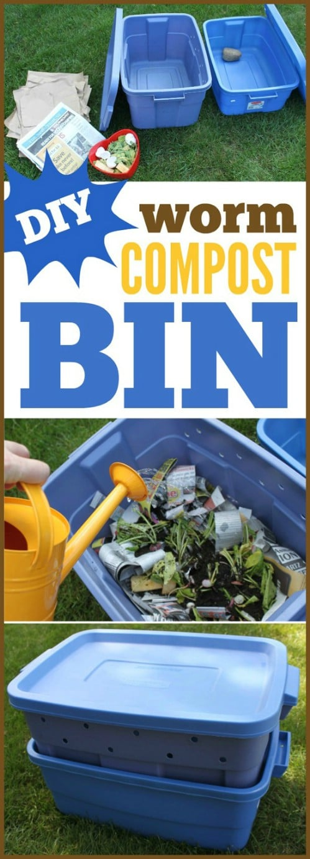 Create a worm composting bin.