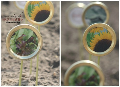 Create seed labels out of canning lids.