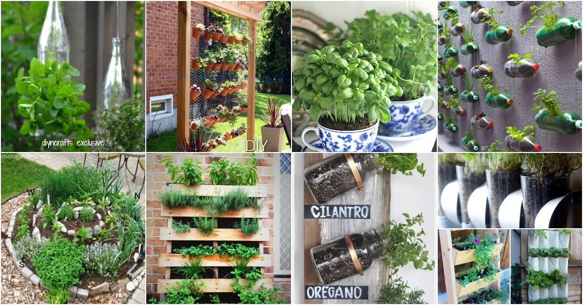 18 Brilliant and Creative DIY Herb Gardens for Indoors and Outdoors