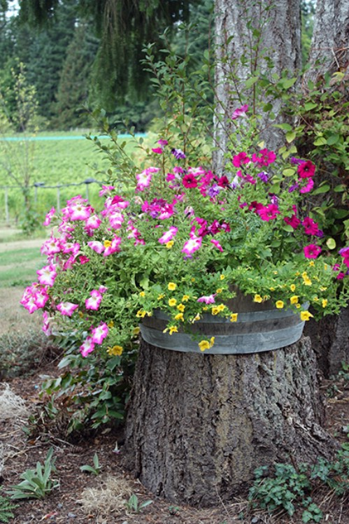 Add a Barrel Planter