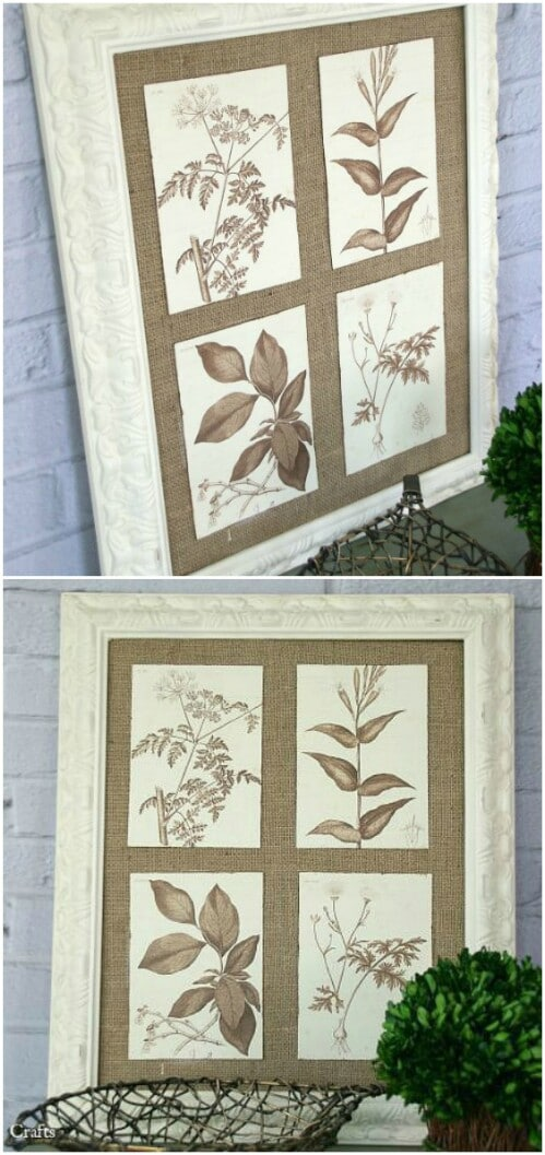 Framed Botanical Art