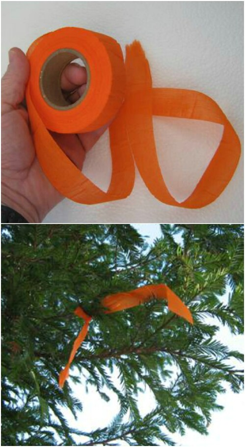 14. Biodegradable Trail Tape