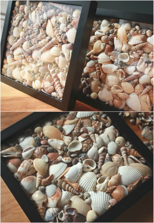 20 fabulous beach worthy projects to create from seashells diy seashell shadow boxes solutioingenieria Images