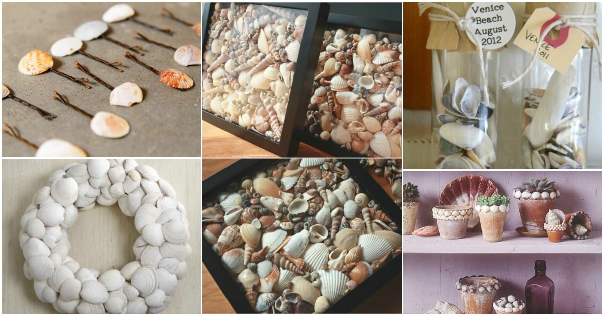 20 Fabulous Beach-Worthy Projects to Create from Seashells