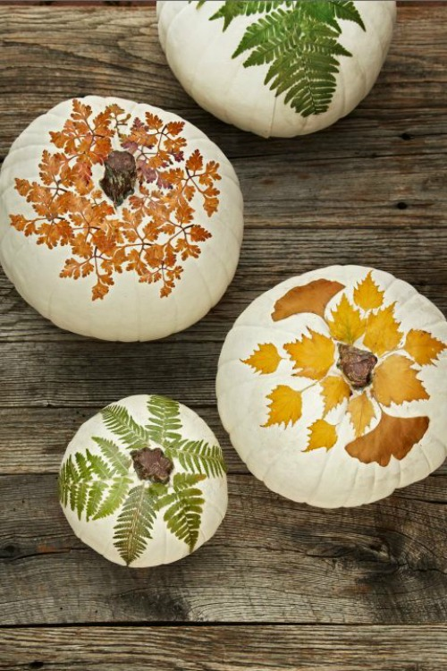 48. Pressed Foliage Pumpkins