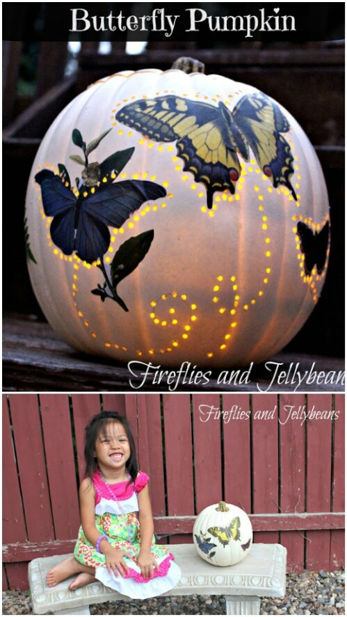 53. Butterfly Pumpkin