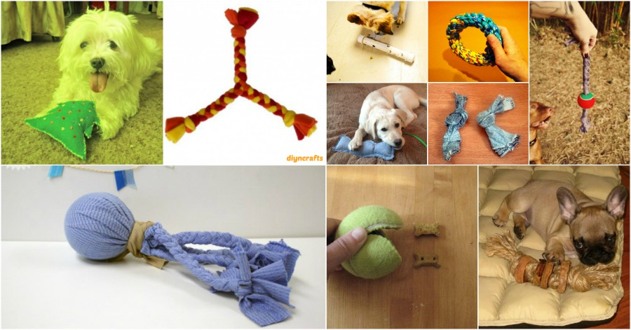 25 frugally fun diy dog toys to pamper your pooch diy