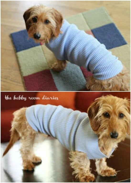 Easy Small Dog Sweater - 50 Amazingly Creative Upcycling Projects For Old Sweaters