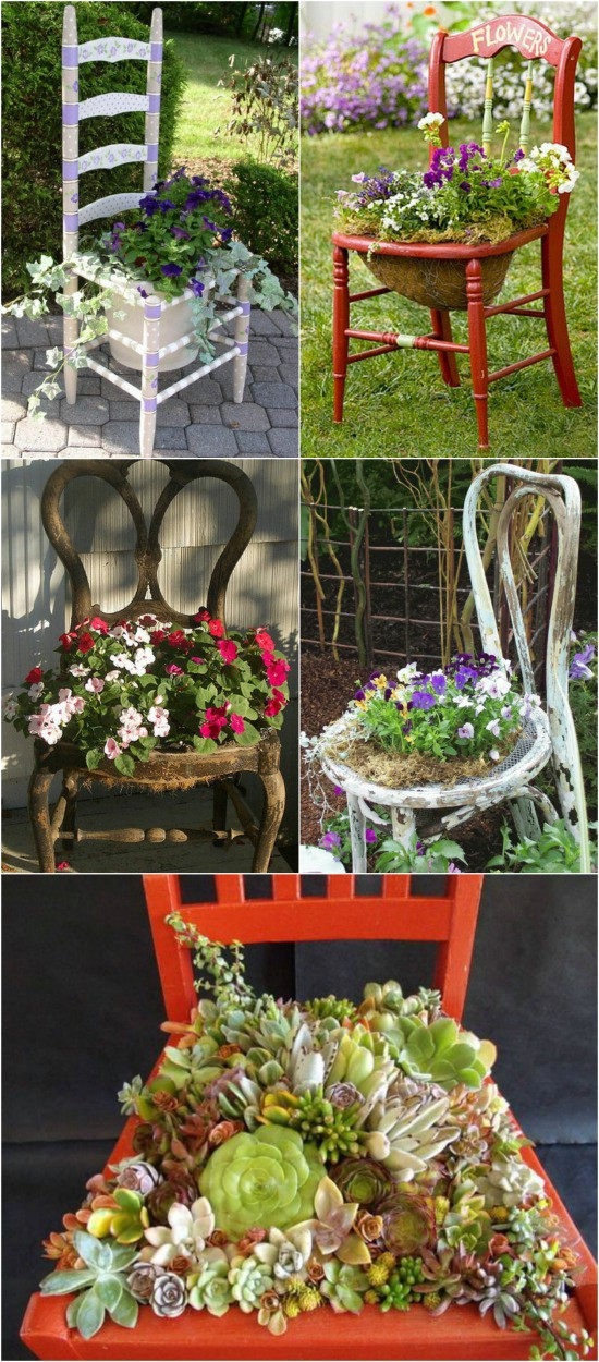 Broken Chair Succulent Planter