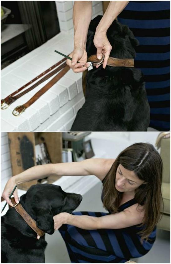 Repurposed Leather Belt Dog Collars
