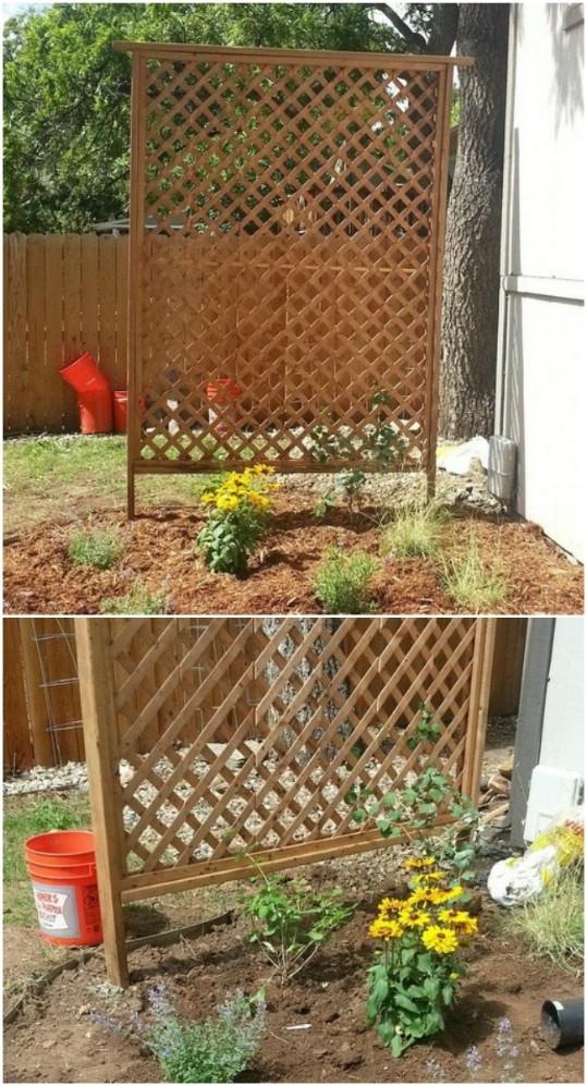 Simple Cedar Garden Trellis