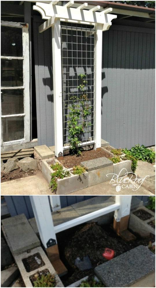 DIY Elegant Garden Trellis
