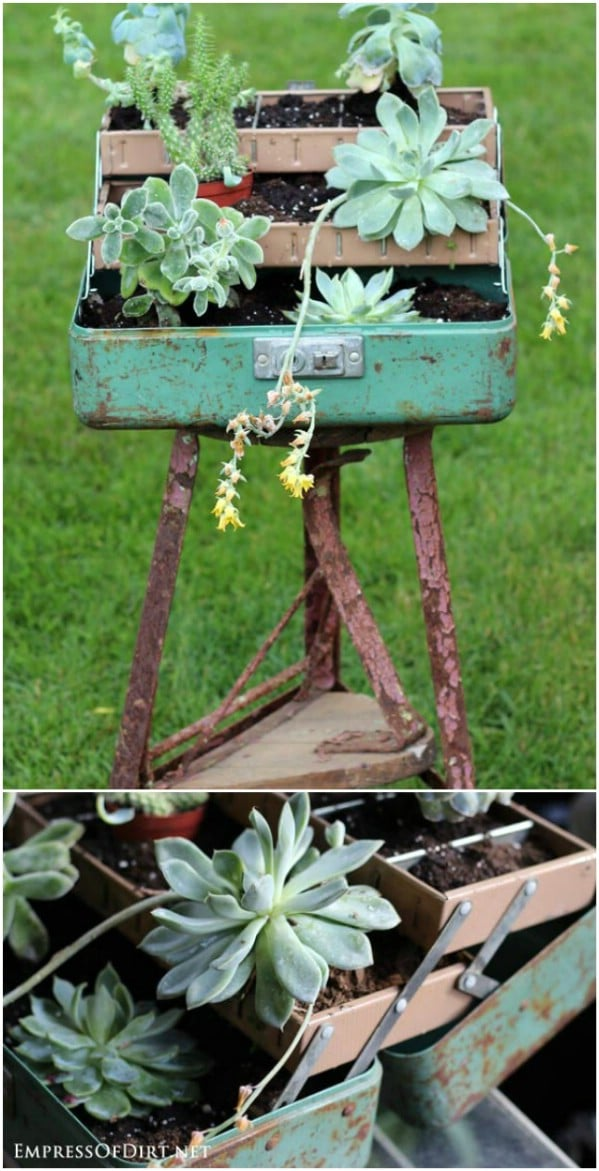 Succulent Fishing Tackle Box