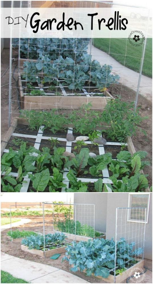Gardening Trellis Ideas Part - 25: Easy DIY Squash And Melon Trellis